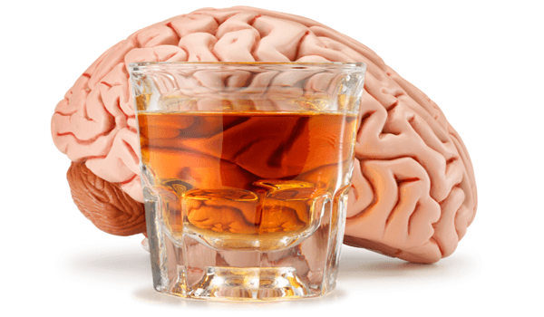 How-Alcohol-Affects-the-Brain